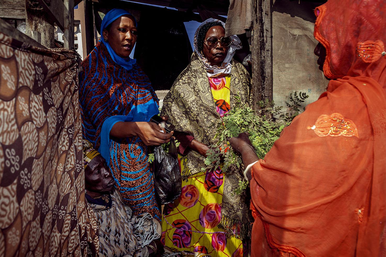 Orti Urbani, Programma di milgioramente della sicurezza alimentare, Dakar, Senegal.