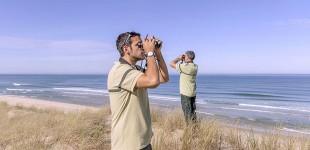 Un Reseau pour la Biodiversité des Oiseaux