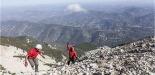 ONF, le Mont Ventoux retrouve sa beauté